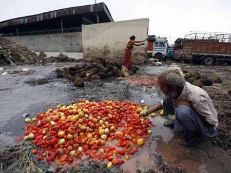 Agriculture food waste